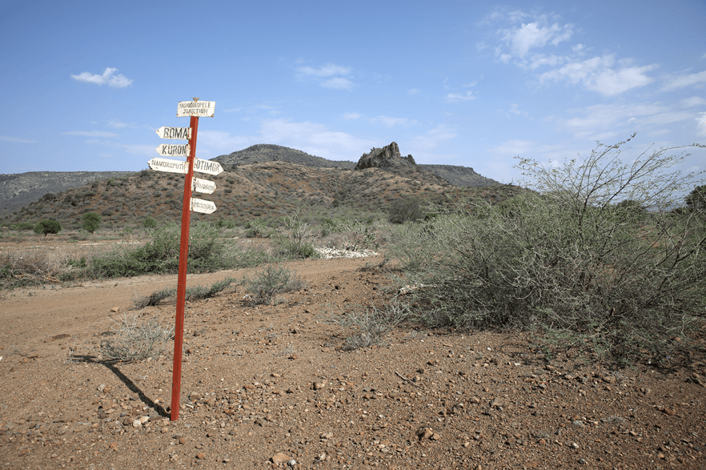shruby landscape with crossroads sign